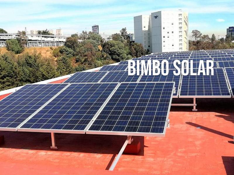 Con Bimbo Solar el Grupo ratifica su Compromiso Ambiental