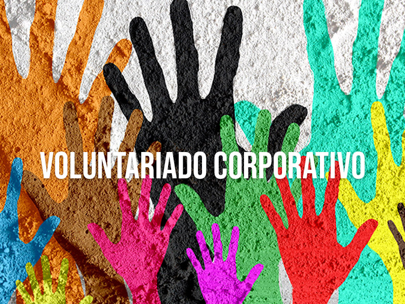 Programa de Voluntariado corporativo