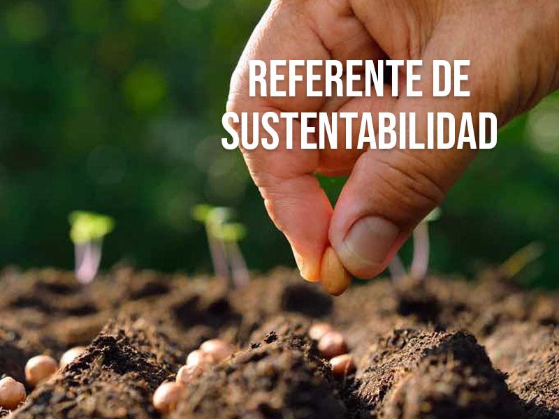 Unilever, referente de sustentabilidad entre las empresas socialmente responsables