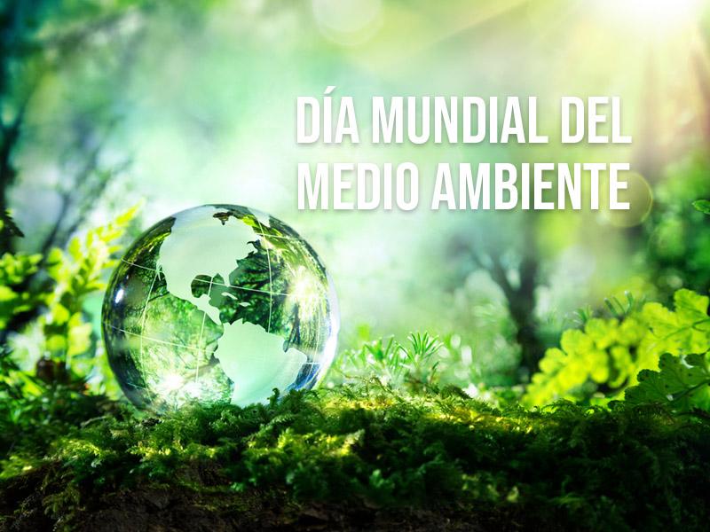 Día mundial del medioambiente: Un llamado para toda la sociedad contra el daño ambiental
