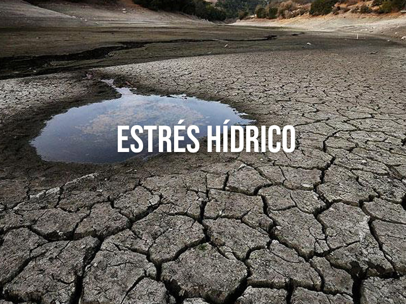 La Gestión Integral del Agua en un Futuro con Estrés Hídrico