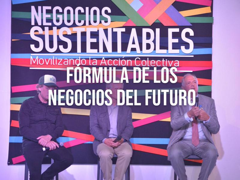 Sustentabilidad y accion colectiva formula de los negocios del futuro 3