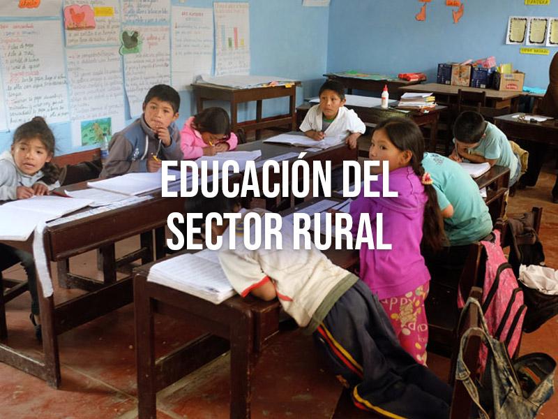 Responsabilidad social en educación del sector rural