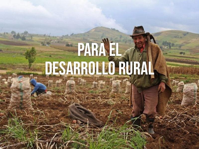 Microfinanzas una nueva alternativa